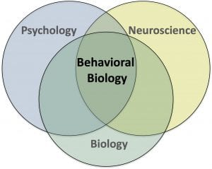 Behavioral biology is the intersection of BIOLOGY, psychology and neuroscience