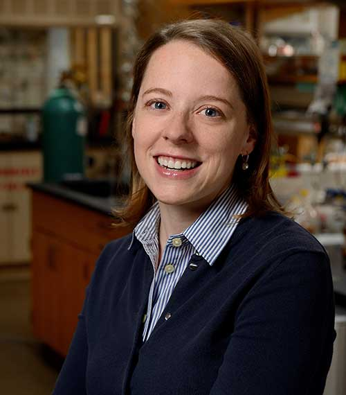 Rebekka Klausen Receives NSF CAREER Award