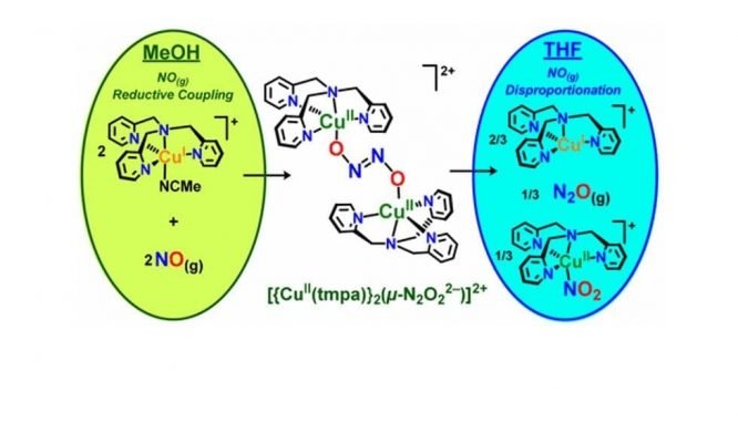 reductive coupling of NO to form N2O