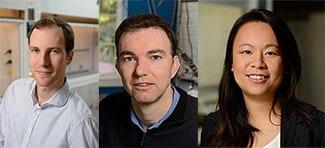 Professors Thoi, Kempa, and Fairbrother awarded 2019 Hopkins Discovery Award