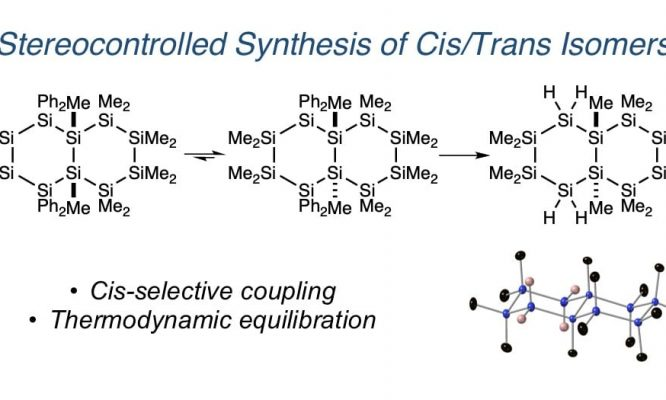 The Klausen Group reports the synthesis of a silicon macrocycle.