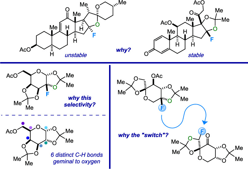 The Lectka Group Publishes Featured Article in JOC