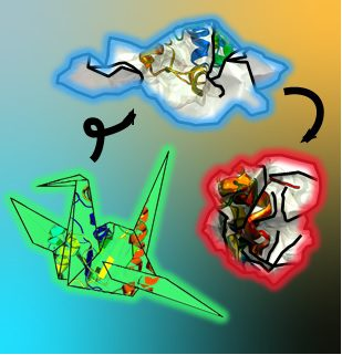 Fried Lab publishes in JACS on Protein Nonrefoldability