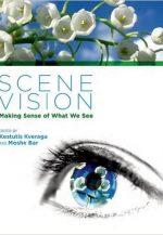 Scene Vision: Making Sense of What We See