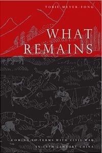 What Remains: Coming to Terms with Civil War in 19th Century China