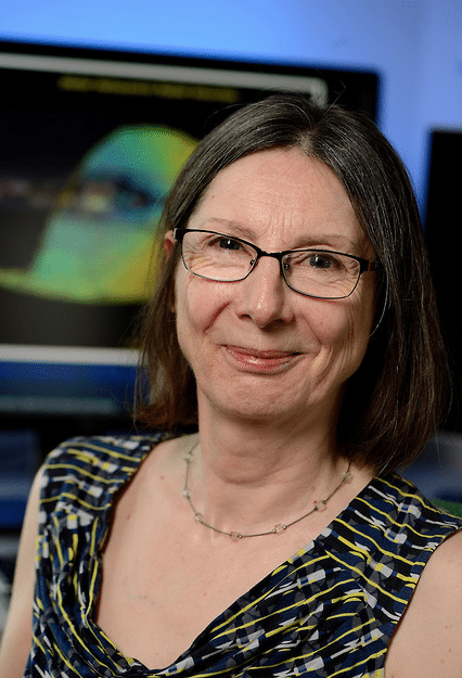 Prof. Rosemary Wyse Elected a Fellow of the American Physical Society.