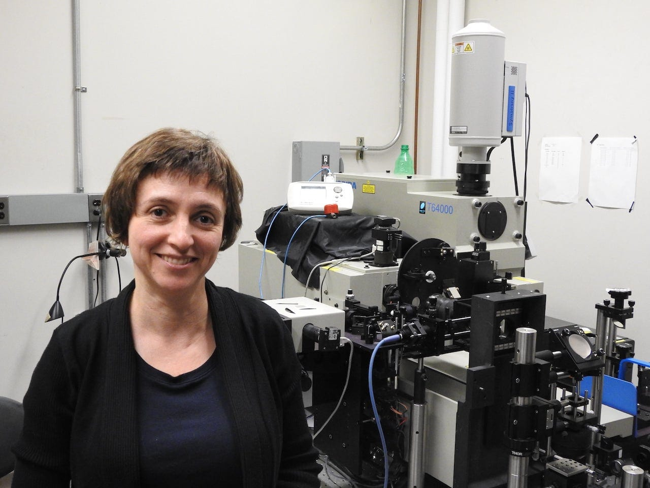 Natalia Drichko's Lab Publishes Evidence for a New Property of Quantum Matter