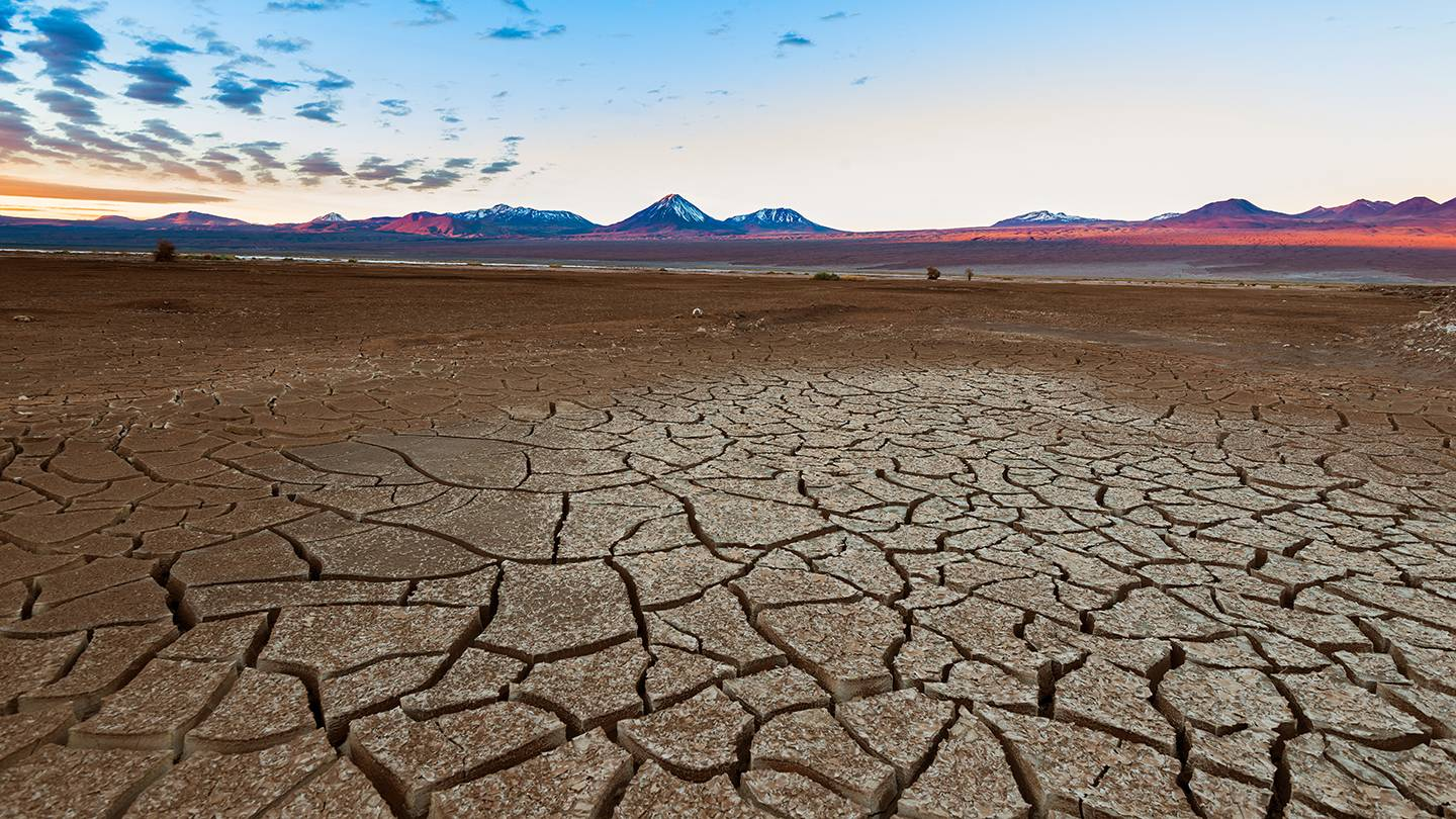 An expanse of cracked desert ground leading to the horizon