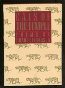 Cats of the Temple