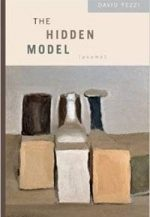 The Hidden Model